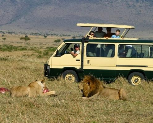 5 days Masai Mara Safari