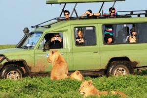 6 days masai mara and serengeti safari