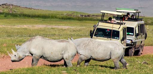 2 day Ngorongoro Crater and Lake Manyara