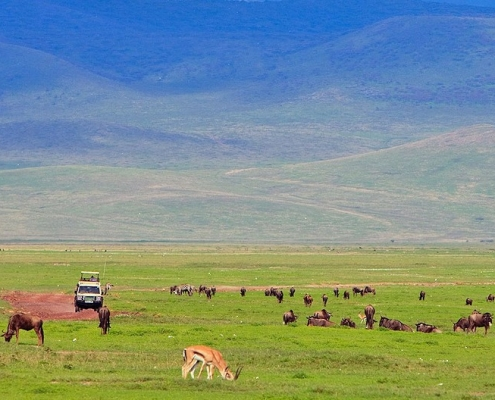 3 days Ngorongoro Safari