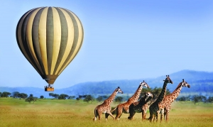 Serengeti National park Safaris hot air balloon