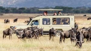 Serengeti national park tours